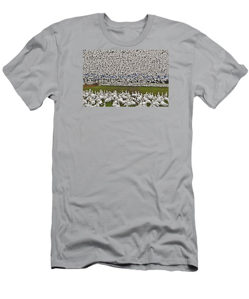 Snow Geese By The Thousands Men's T-Shirt (Slim Fit) by Valerie Garner
