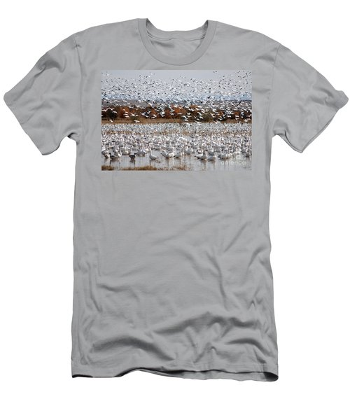 Snow Geese No.4 Men's T-Shirt (Athletic Fit)