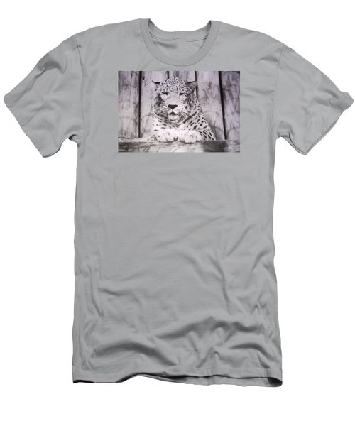 Men's T-Shirt (Slim Fit) featuring the photograph White Snow Leopard Chillin by Belinda Lee
