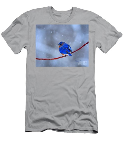 Snowy Bluebird Men's T-Shirt (Athletic Fit)