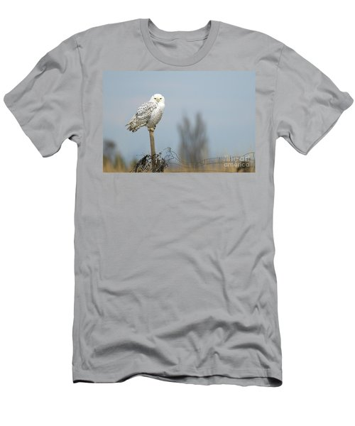 Snowy Owl On Fence Post 2 Men's T-Shirt (Athletic Fit)