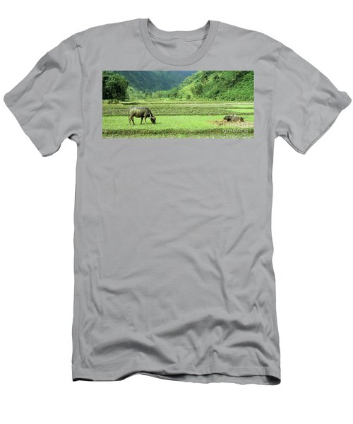 Song Chay Valley Men's T-Shirt (Athletic Fit)