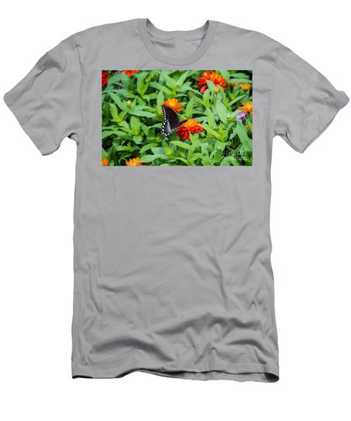 Spicebush Swallowtail Men's T-Shirt (Athletic Fit)