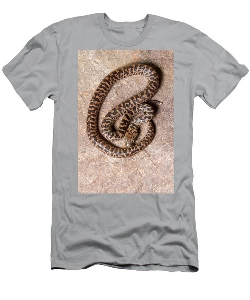 Spotted Python Antaresia Maculosa Top Men's T-Shirt (Athletic Fit)