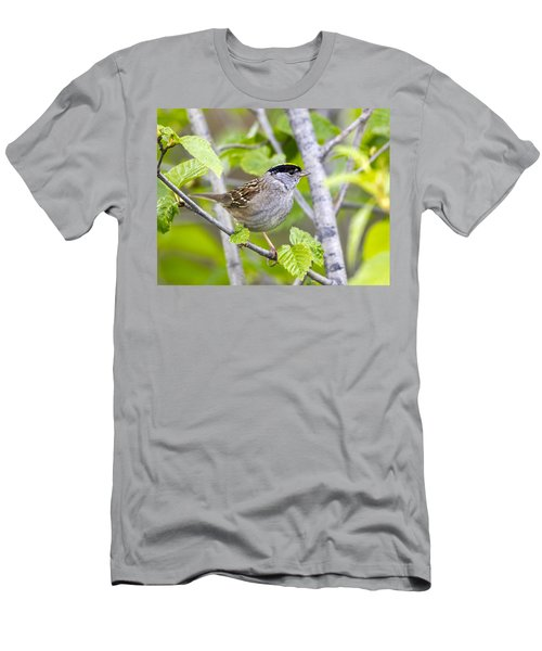 Spring Scene Men's T-Shirt (Athletic Fit)