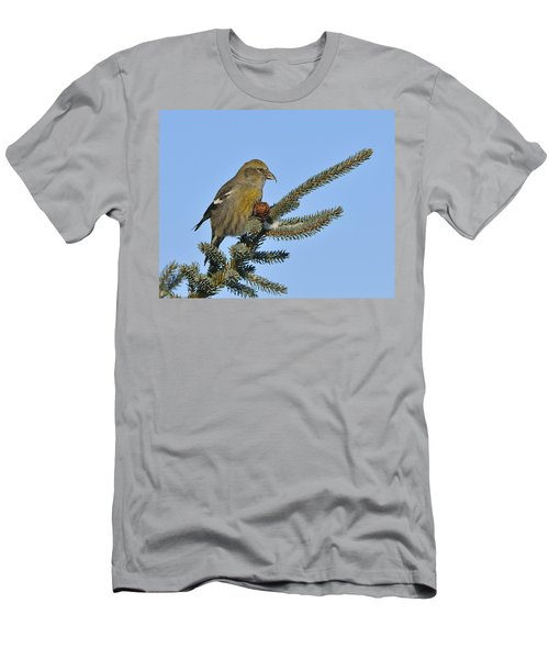 Spruce Cone Feeder Men's T-Shirt (Athletic Fit)