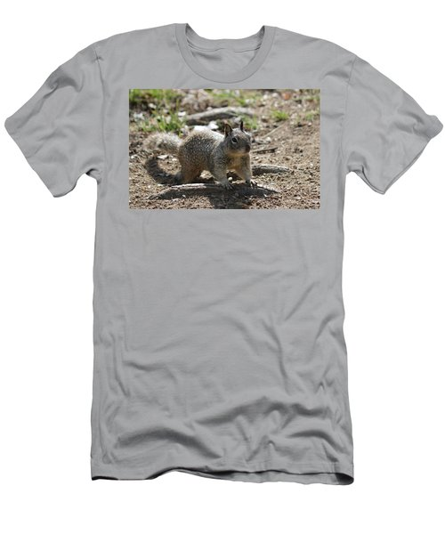 Squirrel Play  Men's T-Shirt (Athletic Fit)