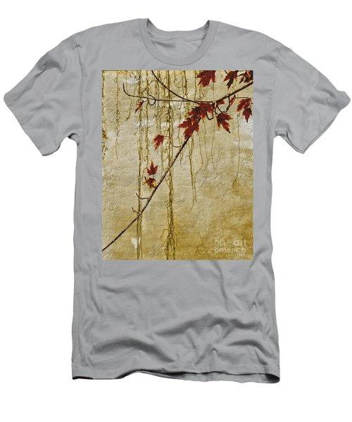 Stone Walled Men's T-Shirt (Slim Fit) by Andrea Kollo