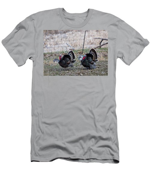 Strutting Turkeys Men's T-Shirt (Athletic Fit)