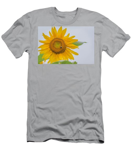 Sunflower And Bee Men's T-Shirt (Athletic Fit)