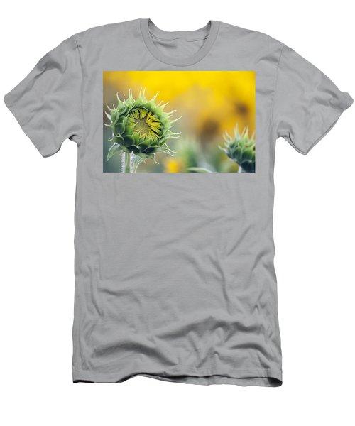 Sunflower Bloom Men's T-Shirt (Athletic Fit)