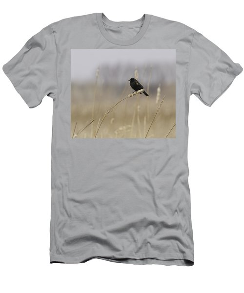 Sure Sign Of Spring Men's T-Shirt (Athletic Fit)