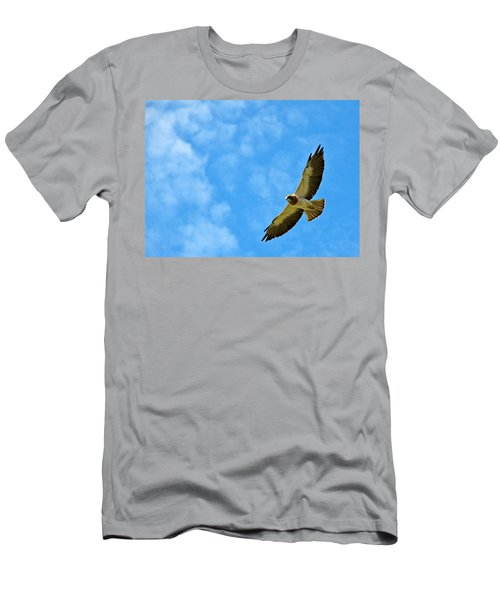 Swainson's Hawk Snake River Birds Of Prey Natural Conservation Area Men's T-Shirt (Athletic Fit)