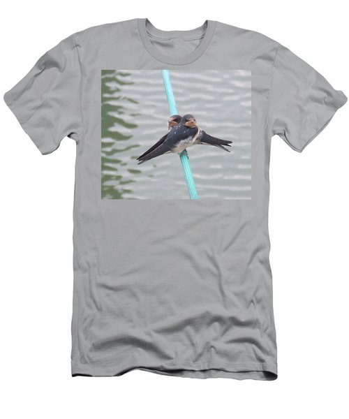 Swallows Men's T-Shirt (Athletic Fit)