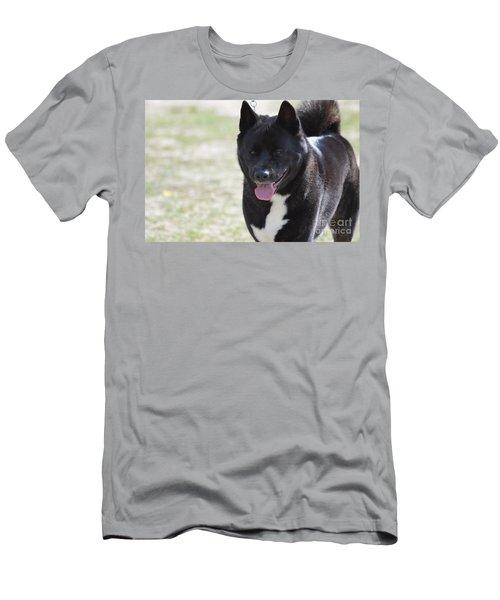Sweet Akita Dog Men's T-Shirt (Athletic Fit)