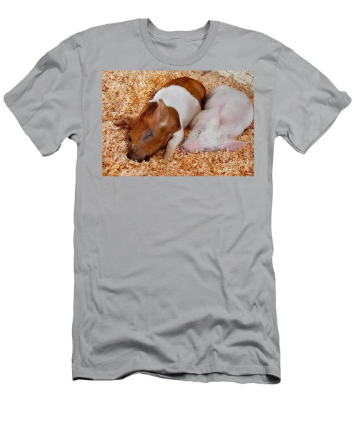 Sweet Piglets Nap Art Prints Men's T-Shirt (Slim Fit) by Valerie Garner