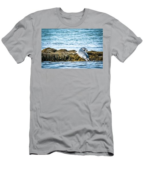 Sweet Seal Men's T-Shirt (Athletic Fit)