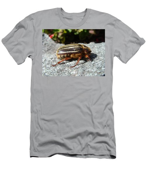 Ten-lined June Beetle Profile Men's T-Shirt (Athletic Fit)