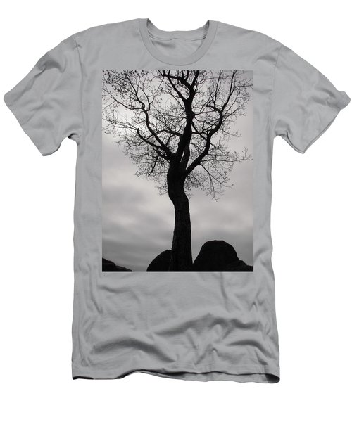 The Chill Of Spring In The Shenandoah Men's T-Shirt (Athletic Fit)