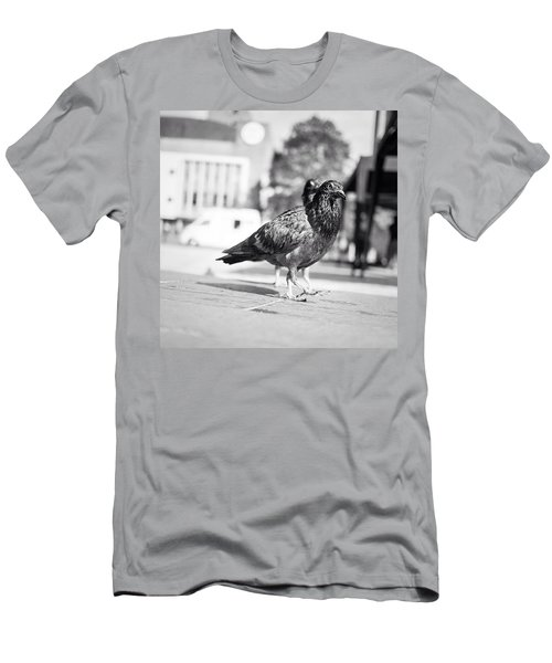 The Dove March (goose Step) Men's T-Shirt (Athletic Fit)
