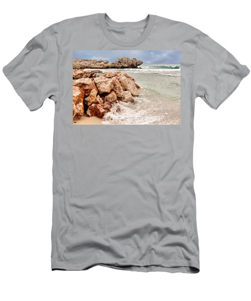 The Dragon Of Labadee Men's T-Shirt (Athletic Fit)