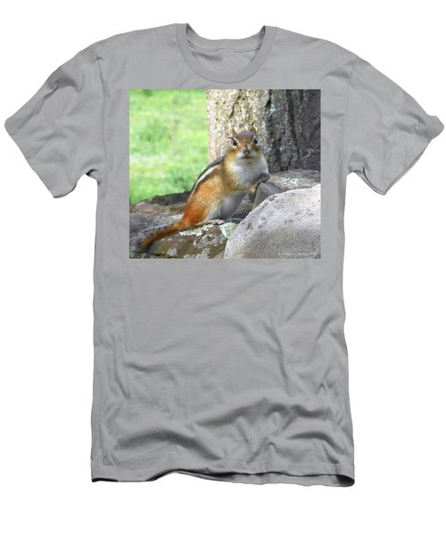 The Watching Chipmunk Reclines Men's T-Shirt (Athletic Fit)