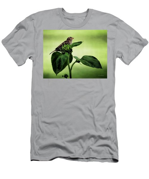 Thoughtful Sparrow Men's T-Shirt (Athletic Fit)