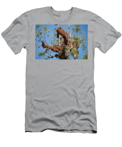 Tikal Furry Tree Closeup Men's T-Shirt (Athletic Fit)