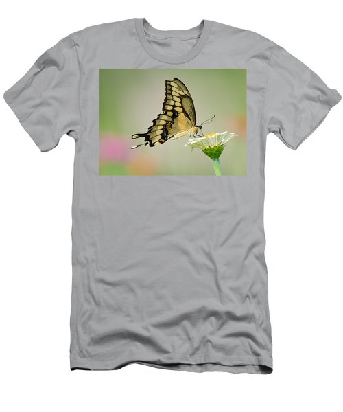 Torn Beauty Men's T-Shirt (Athletic Fit)