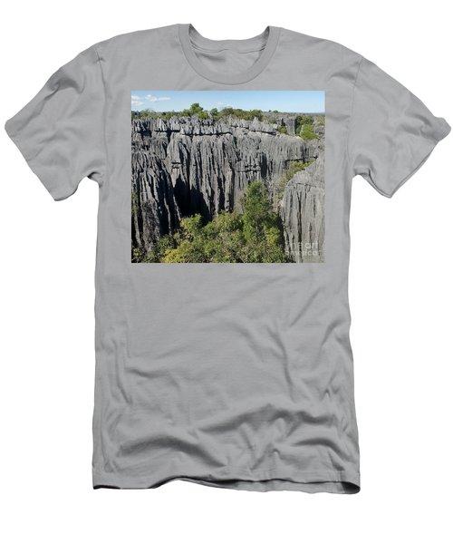 Tsingy De Bemaraha Madagascar 1 Men's T-Shirt (Athletic Fit)