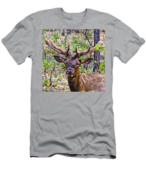 Men's T-Shirt (Slim Fit) featuring the photograph Up Close And Personal With An Elk by Bob and Nadine Johnston