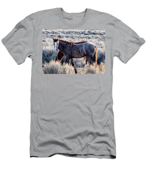 Velvet - Young Colt In Sand Wash Basin Men's T-Shirt (Slim Fit) by Nadja Rider