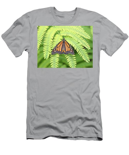 Viceroy Men's T-Shirt (Athletic Fit)