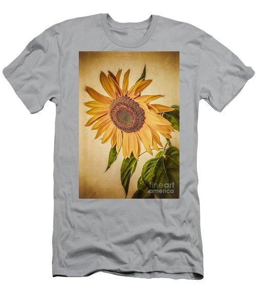 Vintage Sunflower Men's T-Shirt (Athletic Fit)