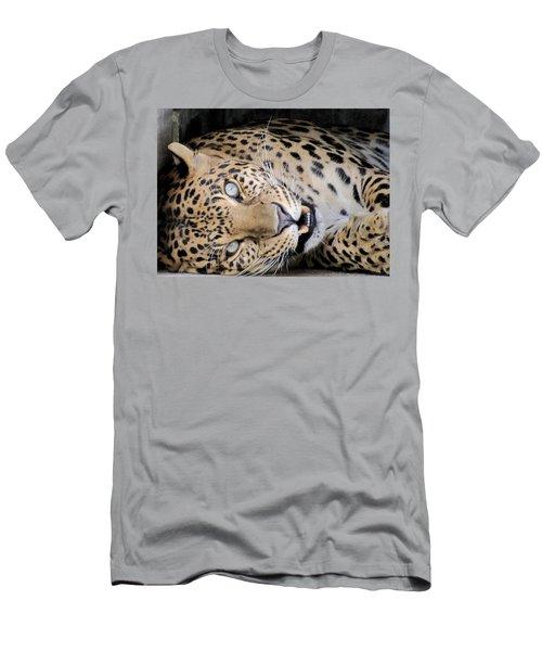 Voodoo The Leopard Men's T-Shirt (Athletic Fit)