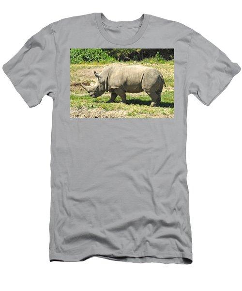 White Rhinoceros Grazing Men's T-Shirt (Athletic Fit)