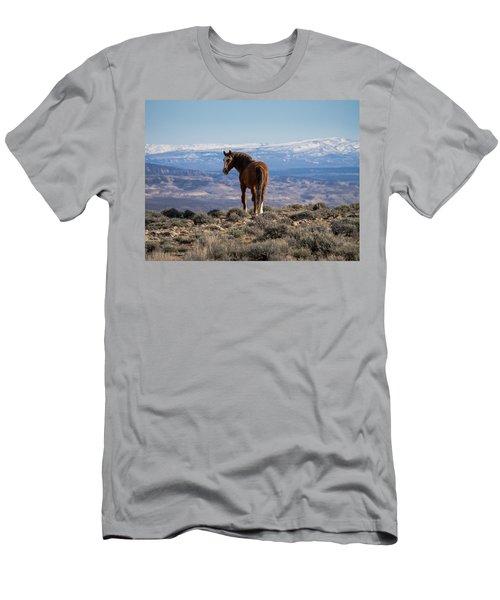 Wild Stallion Of Sand Wash Basin Men's T-Shirt (Slim Fit) by Nadja Rider