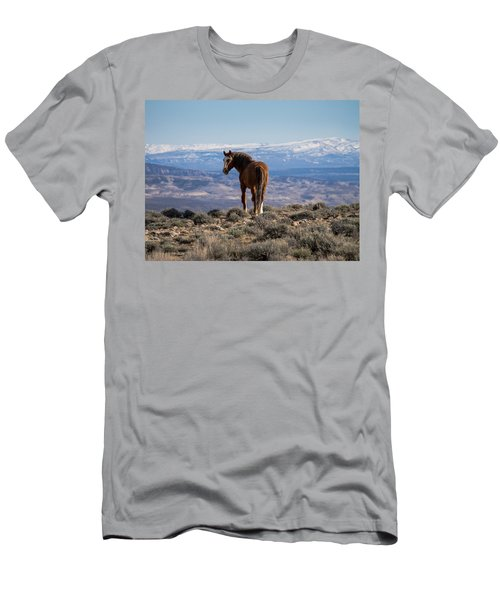 Wild Stallion Of Sand Wash Basin Men's T-Shirt (Athletic Fit)