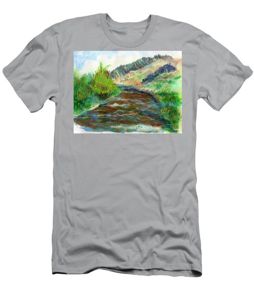 Willow Creek In Spring Men's T-Shirt (Slim Fit) by C Sitton