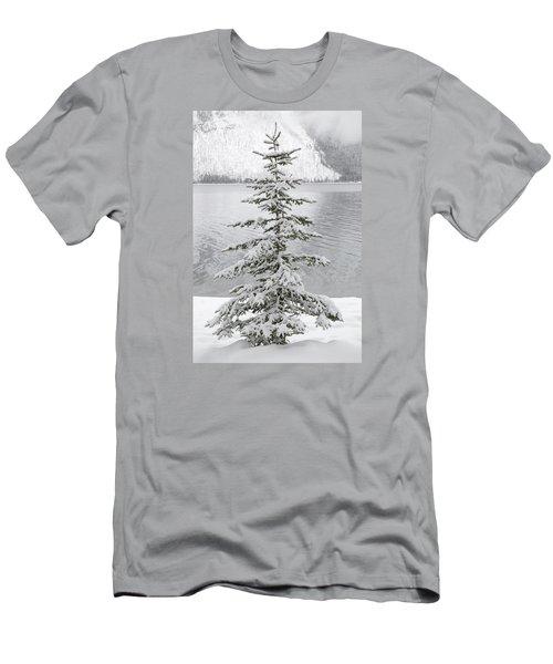 Winter Decor Men's T-Shirt (Slim Fit) by Diane Bohna