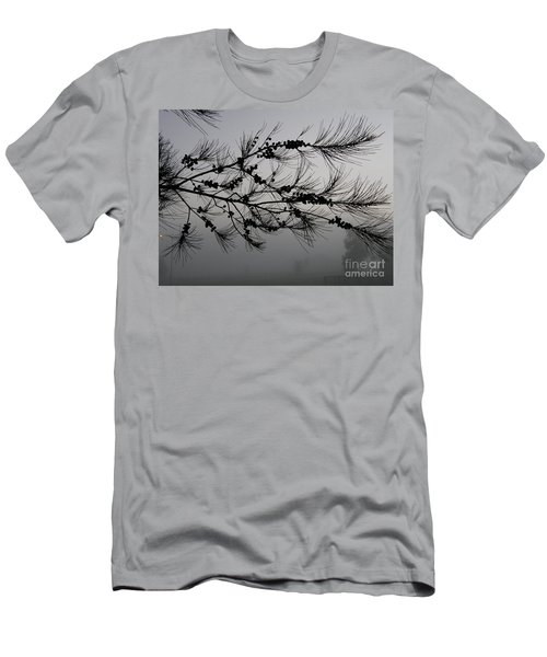 Winter Pine Branch Men's T-Shirt (Athletic Fit)