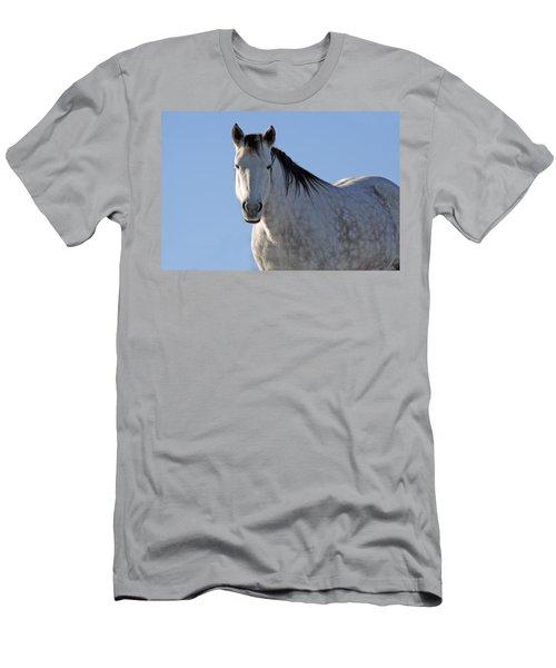 Winter Pony Men's T-Shirt (Athletic Fit)