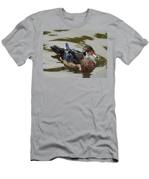 Wood Duck Men's T-Shirt (Slim Fit) by Brenda Brown