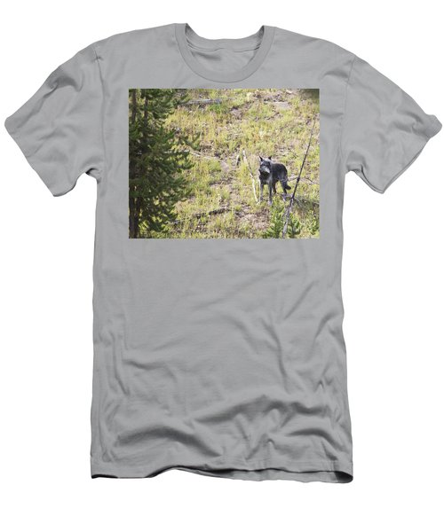 Men's T-Shirt (Slim Fit) featuring the photograph Yellowstone Wolf by Belinda Greb
