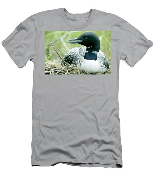 Common Loon, La Mauricie National Park Men's T-Shirt (Slim Fit)