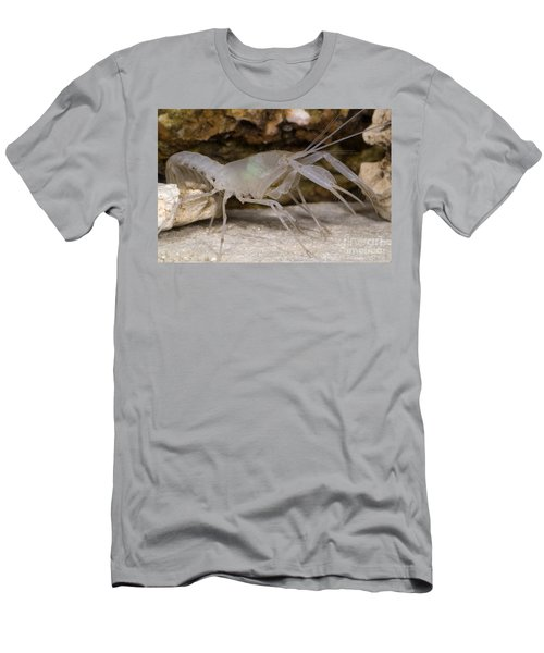 Mclanes Cave Crayfish Men's T-Shirt (Athletic Fit)