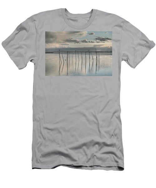 Albufera Gris. Valencia. Spain Men's T-Shirt (Athletic Fit)