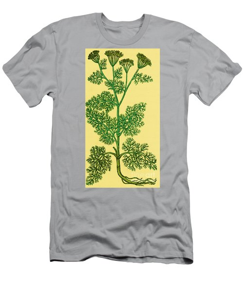 Anethum Graveolens-dill Men's T-Shirt (Athletic Fit)
