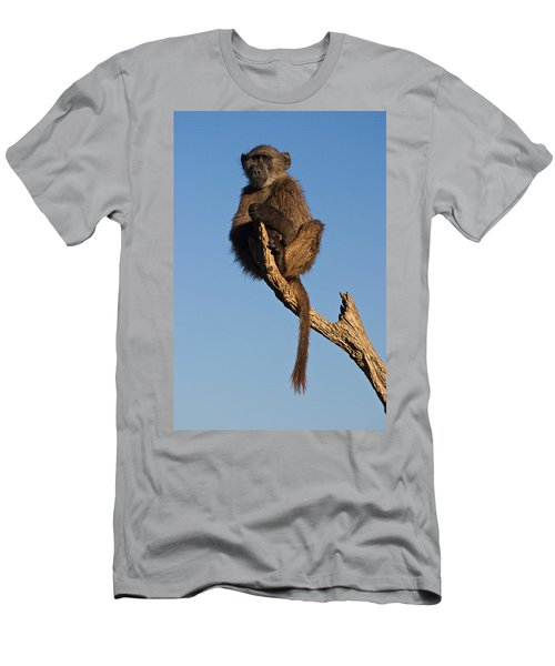 Baboon Sentry Namibia Men's T-Shirt (Athletic Fit)