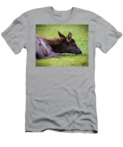 Men's T-Shirt (Slim Fit) featuring the photograph Baby Elk by Steve McKinzie